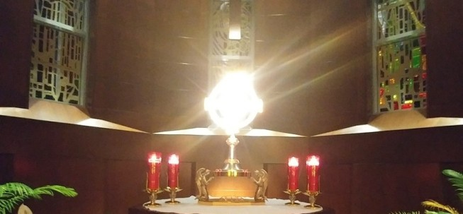 Image result for adoration tabernacle luminous light